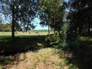 Landelijk gebied Heerde